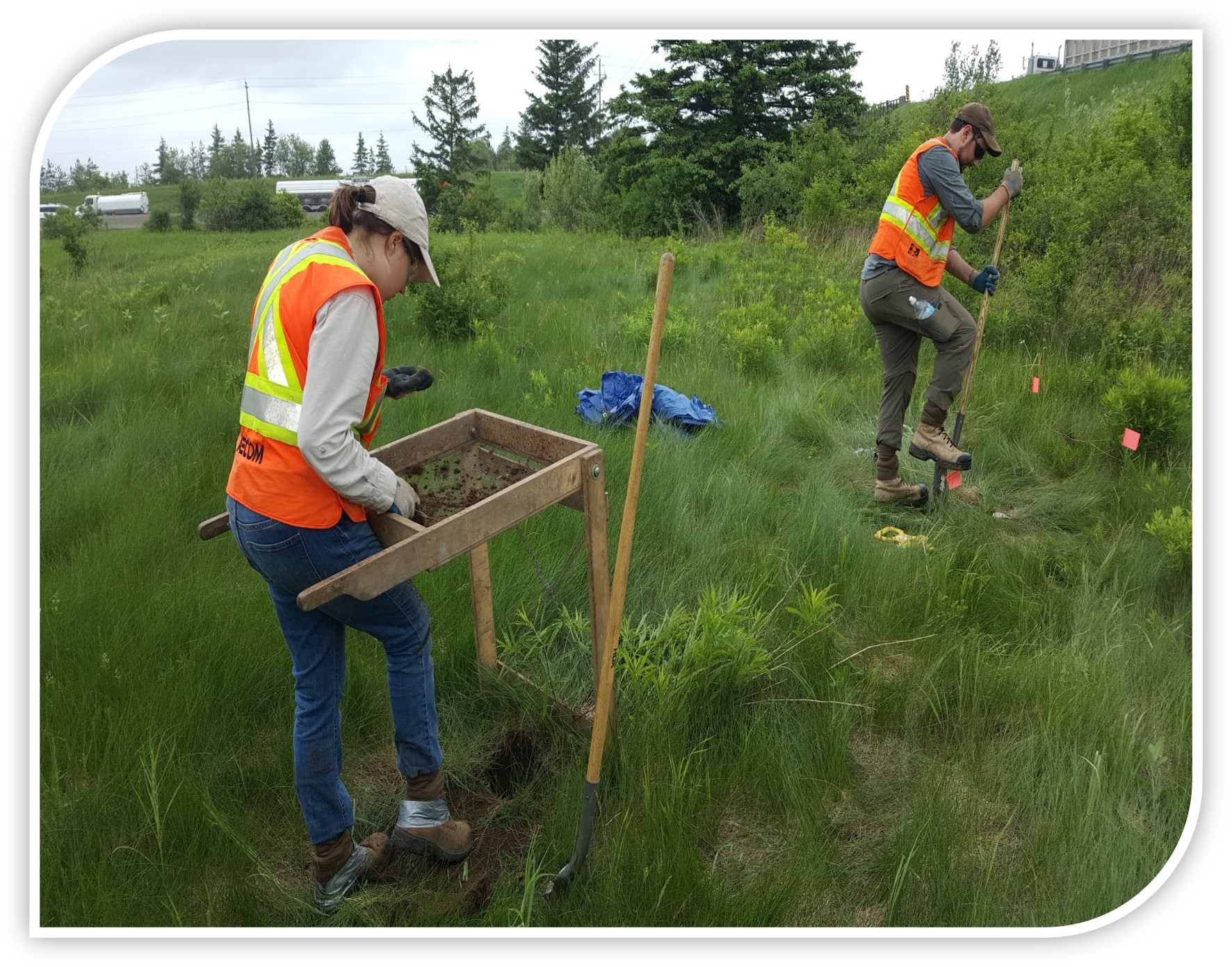 Two Field crew conducting Archaeological Assessment in the Study Area